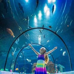 Parc aquarium